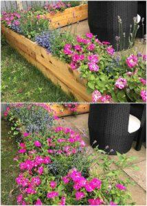Pallet Garden Work